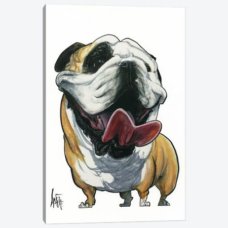 Smiling Bulldog Canvas Print #CCA28} by Canine Caricatures Canvas Artwork