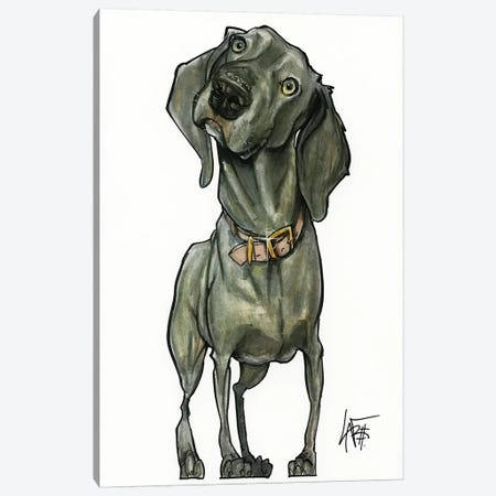 Weimaraner So Curious Canvas Print #CCA32} by Canine Caricatures Canvas Art Print