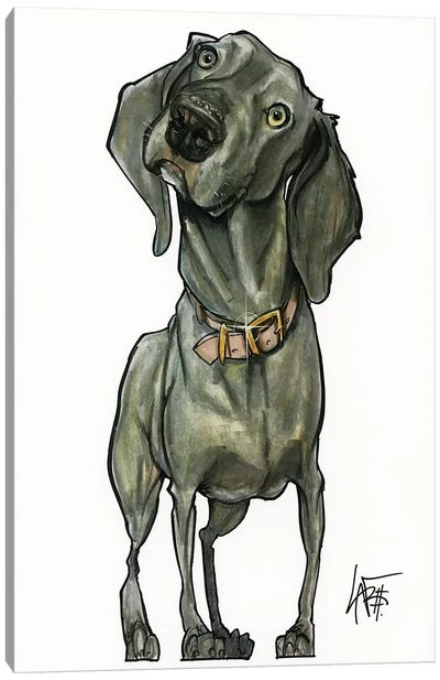 Weimaraner So Curious Canvas Art Print