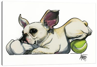 Frenchie Toy Hoarder Canvas Art Print