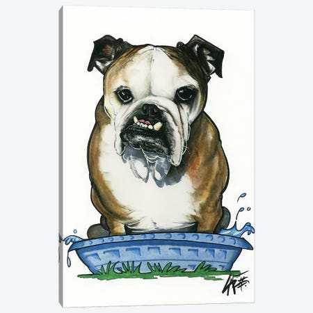 Bulldog in a Kiddie Pool Canvas Print #CCA9} by Canine Caricatures Canvas Print
