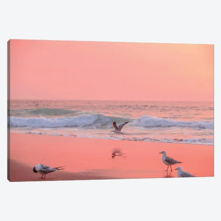 Low Flyer Canvas Print #CCD111} by Charlotte Curd Canvas Wall Art