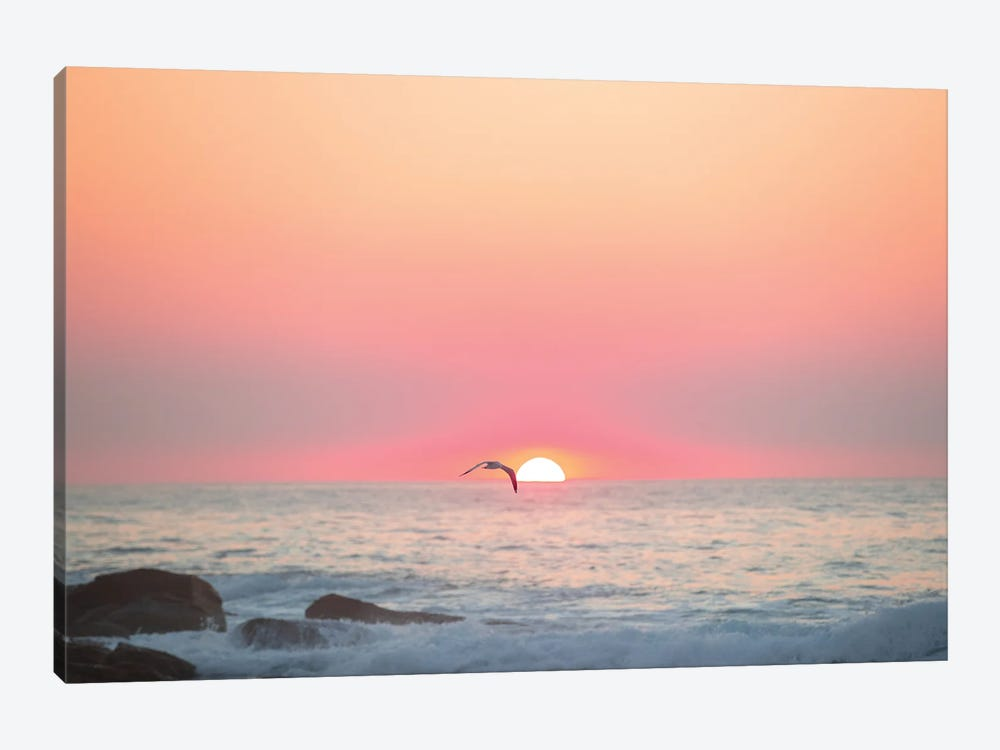 Son by Charlotte Curd 1-piece Canvas Print