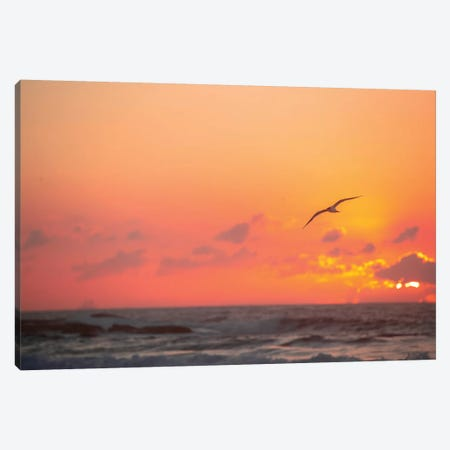 Fiery Skies Canvas Print #CCD19} by Charlotte Curd Canvas Wall Art