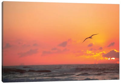 Fiery Skies Canvas Art Print