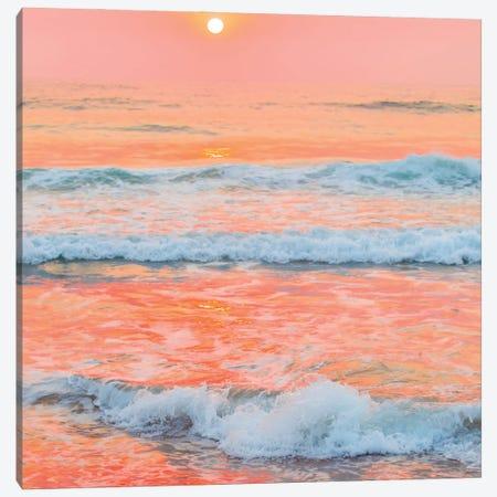 Peaches N Cream Canvas Print #CCD29} by Charlotte Curd Art Print