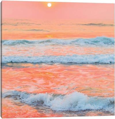 Peaches N Cream Canvas Art Print