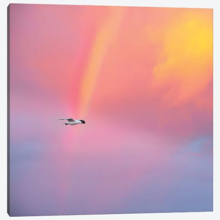 Pot Of Gold Canvas Print #CCD42} by Charlotte Curd Art Print