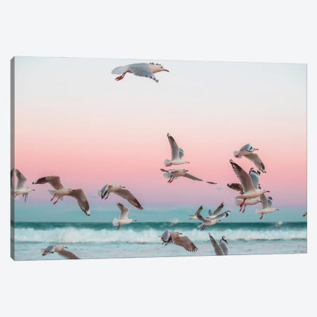 Who Gives A Flying Flock Canvas Print #CCD46} by Charlotte Curd Canvas Art