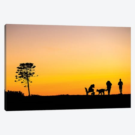 Yellow Hues Canvas Print #CCD50} by Charlotte Curd Canvas Wall Art