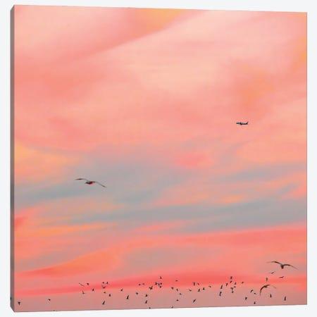 Cushion Canvas Print #CCD58} by Charlotte Curd Canvas Art
