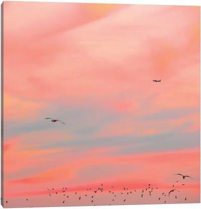 Cushion Canvas Art Print