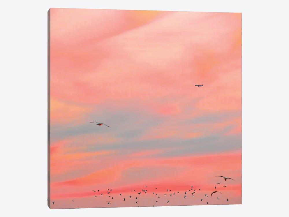 Cushion by Charlotte Curd 1-piece Canvas Print