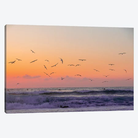 Orange Skies And Birds Fly Canvas Print #CCD65} by Charlotte Curd Canvas Artwork