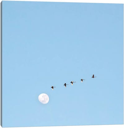 Fly To The Moon Canvas Art Print