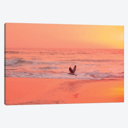 Morning Flow Canvas Print #CCD85} by Charlotte Curd Canvas Artwork