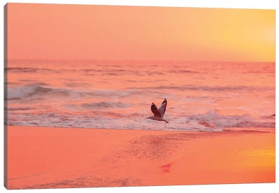 Morning Flow Canvas Art Print