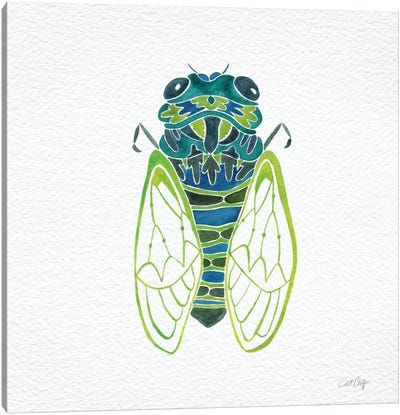 Cicada Blue Artprint Canvas Print #CCE110