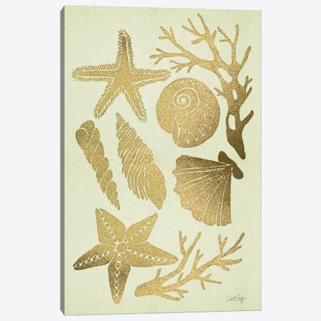 Gold Seashells Artprint Canvas Print #CCE114} by Cat Coquillette Canvas Art