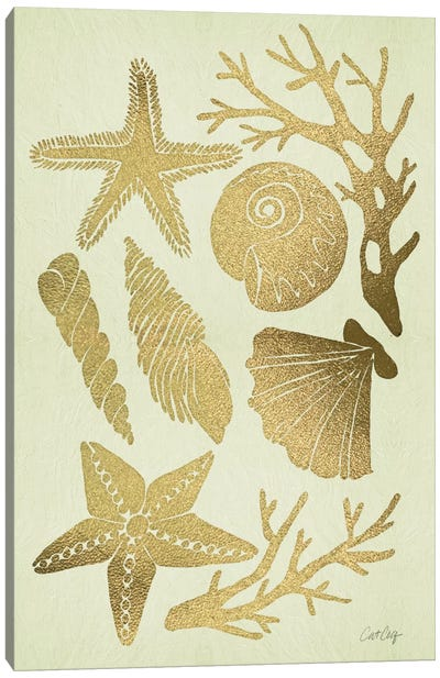 Gold Seashells Artprint Canvas Art Print
