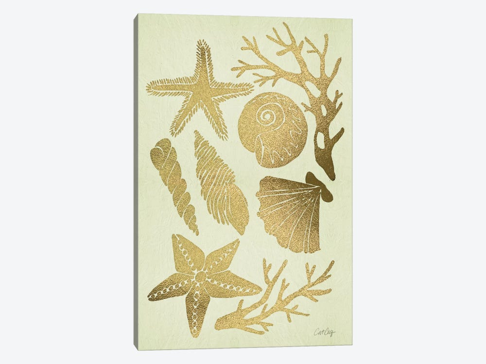 Gold Seashells by Cat Coquillette 1-piece Canvas Art