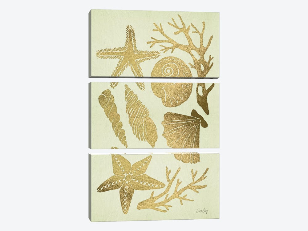 Gold Seashells by Cat Coquillette 3-piece Canvas Wall Art