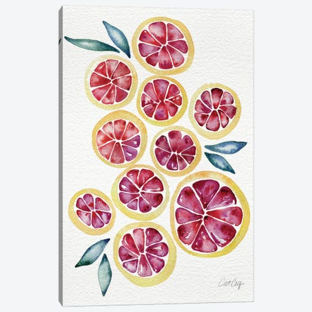 Grapefruits Artprint Canvas Print #CCE122} by Cat Coquillette Canvas Artwork