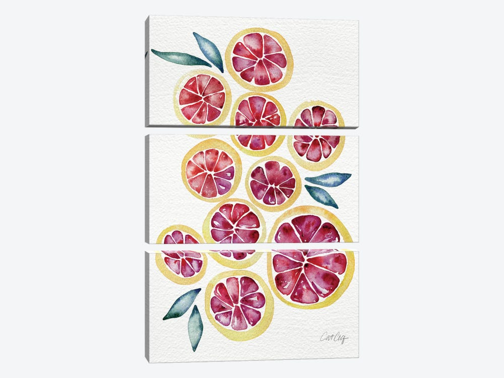 Grapefruits Artprint by Cat Coquillette 3-piece Art Print