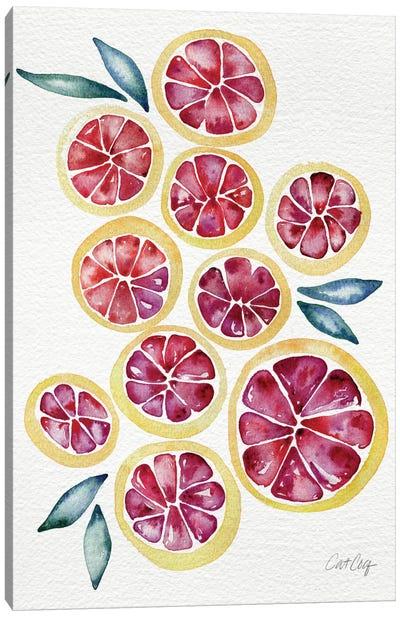 Grapefruits Canvas Art Print