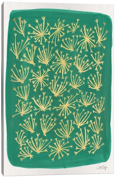 Green Queen Anne Lace Artprint Canvas Print #CCE123