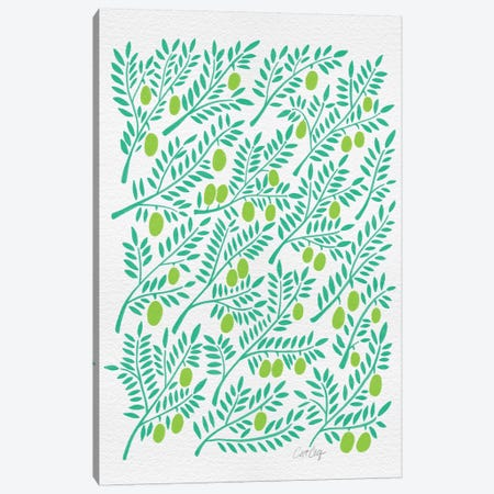 Green Olive Branches Canvas Print #CCE127} by Cat Coquillette Canvas Print