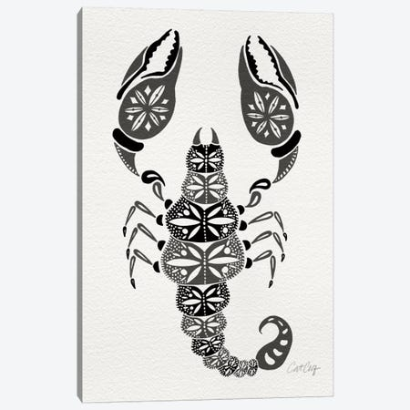 Grey Scorpion Artprint Canvas Print #CCE130} by Cat Coquillette Canvas Art Print