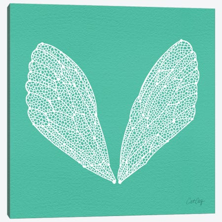 Cicada Wings Turquoise White Artprint Canvas Print #CCE138} by Cat Coquillette Canvas Print