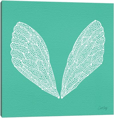 Cicada Wings Turquoise White Artprint Canvas Print #CCE138