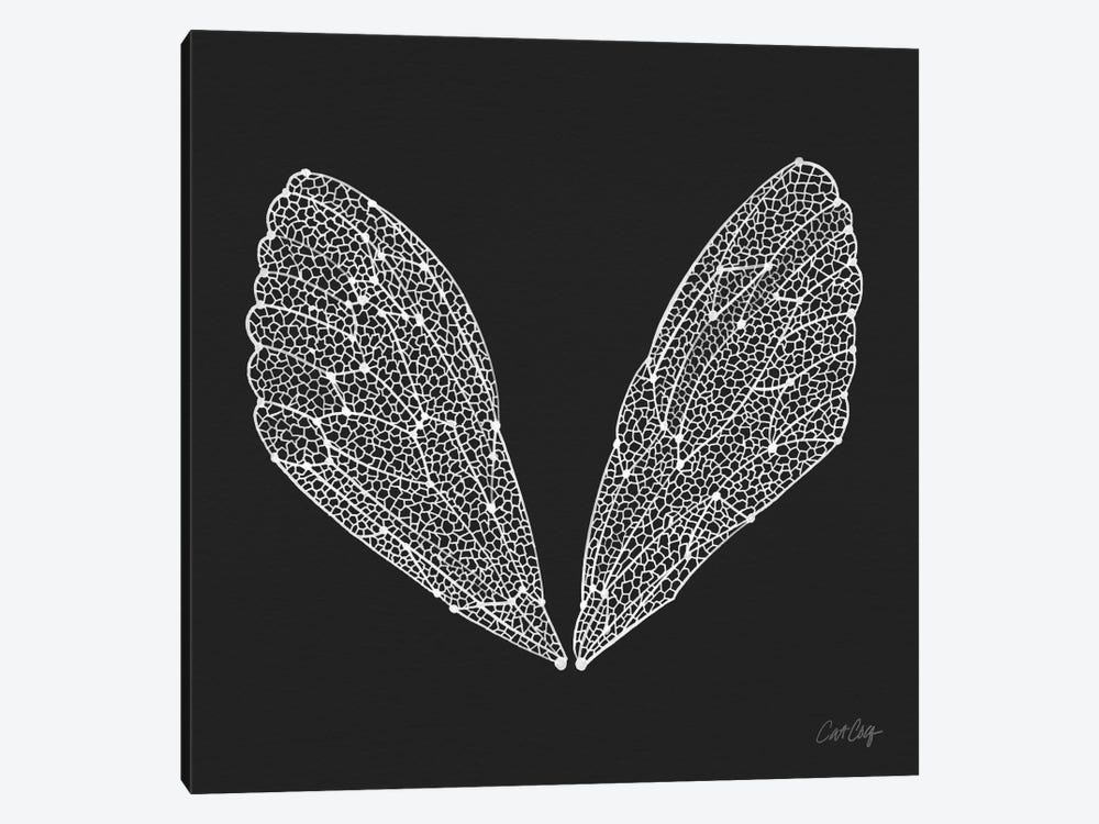 Cicada Wings White Artprint by Cat Coquillette 1-piece Canvas Print