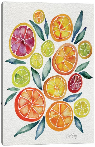 Citrus Slices by Cat Coquillette Canvas Art Print
