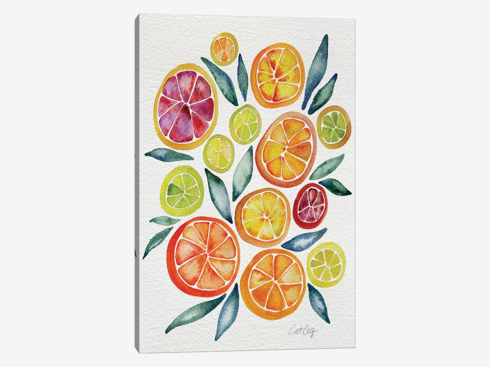 Citrus Slices Artprint by Cat Coquillette 1-piece Canvas Art