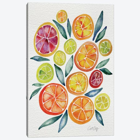 Citrus Slices Canvas Print #CCE141} by Cat Coquillette Canvas Wall Art