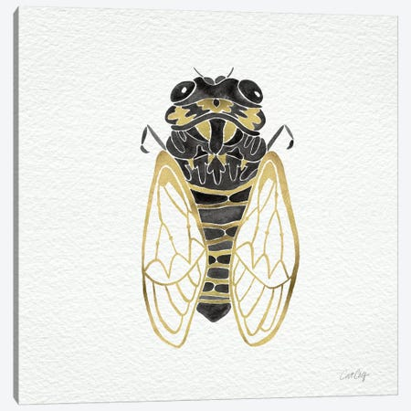 Cicada Gold Black Canvas Print #CCE1} by Cat Coquillette Canvas Art Print