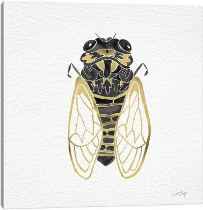 Cicada Gold Black Artprint Canvas Print #CCE1