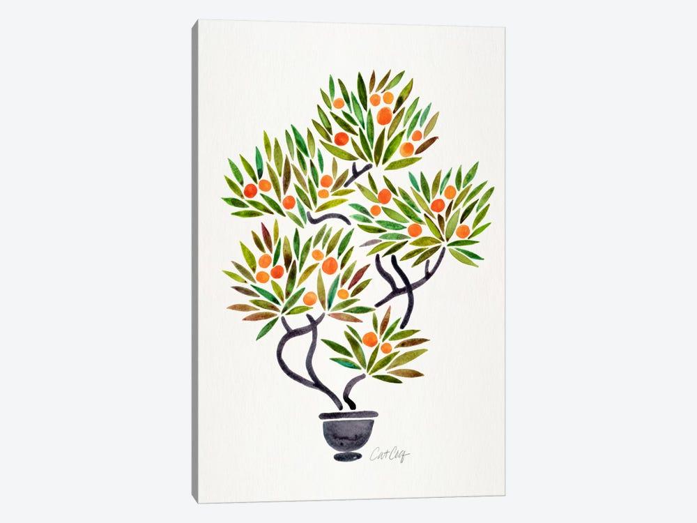 Bonsai Orange Tree I by Cat Coquillette 1-piece Canvas Artwork