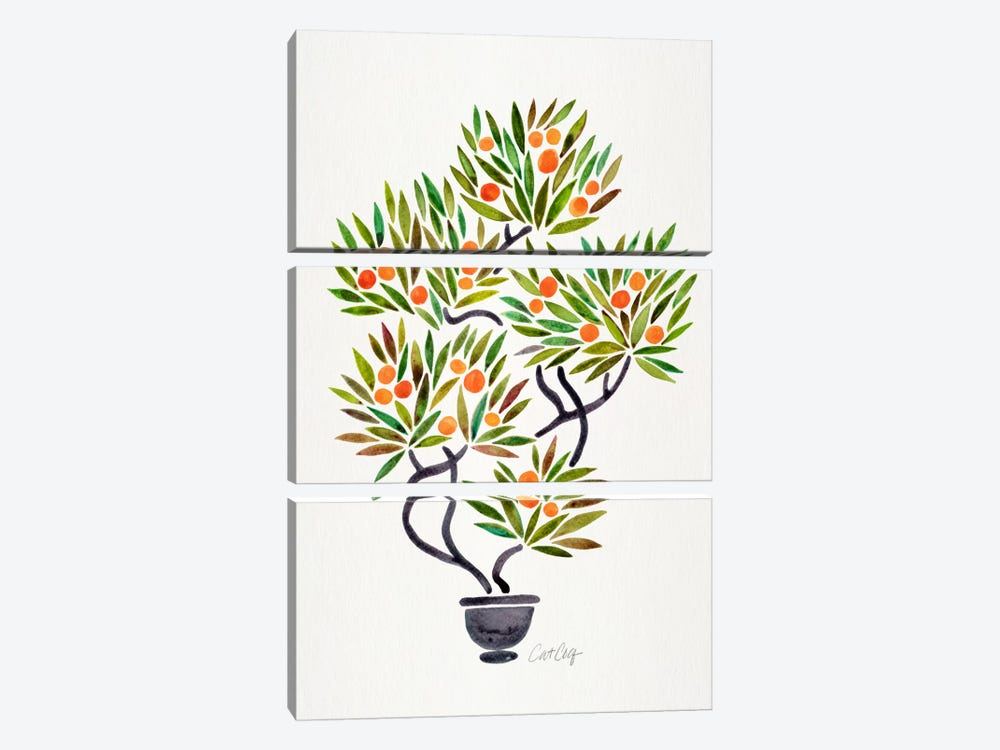 Bonsai Orange Tree I by Cat Coquillette 3-piece Canvas Wall Art