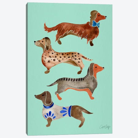Dachshunds I Canvas Print #CCE209} by Cat Coquillette Art Print