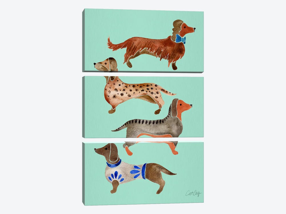 Dachshunds I by Cat Coquillette 3-piece Canvas Art