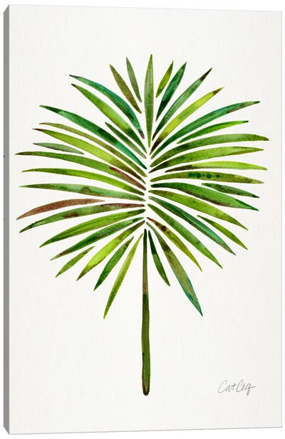 Fan Palm I Canvas Art Print