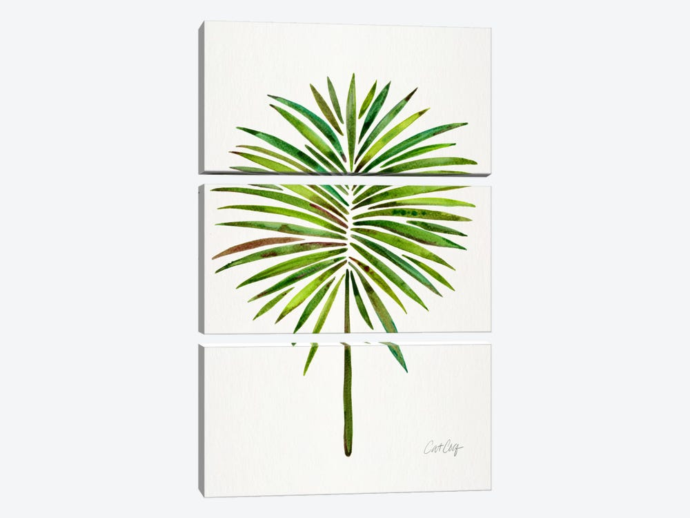 Fan Palm I by Cat Coquillette 3-piece Canvas Art Print