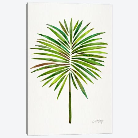 Fan Palm I Canvas Print #CCE213} by Cat Coquillette Canvas Art