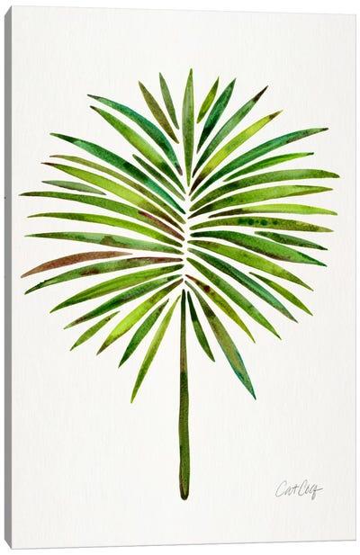 Fan Palm I Canvas Art Print
