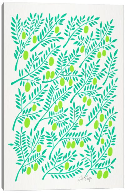 Olive Branches II Canvas Art Print
