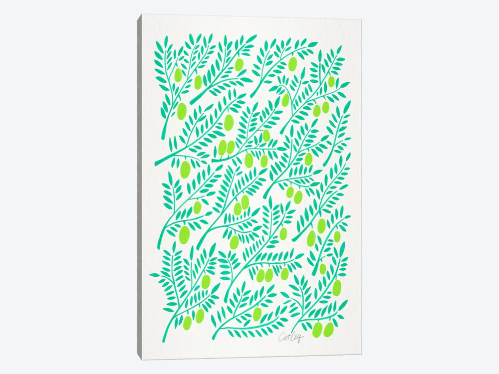 Olive Branches II by Cat Coquillette 1-piece Canvas Artwork